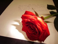 Frases De Bom Dia Para Namorado Distante